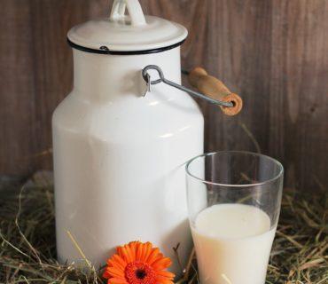 Happy World Milk Day
